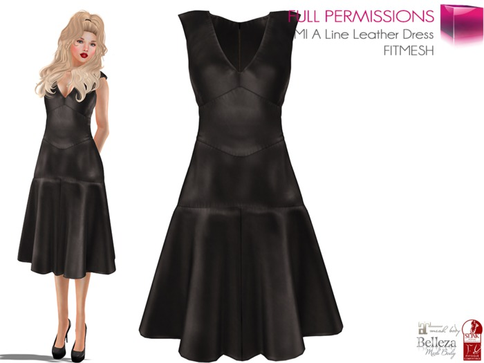 MP_Main_A_Line_Leather_Dress_FitMesh